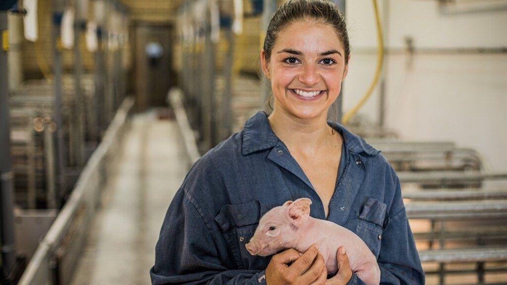 Judith verhoijsen veehouderij onderhandelen