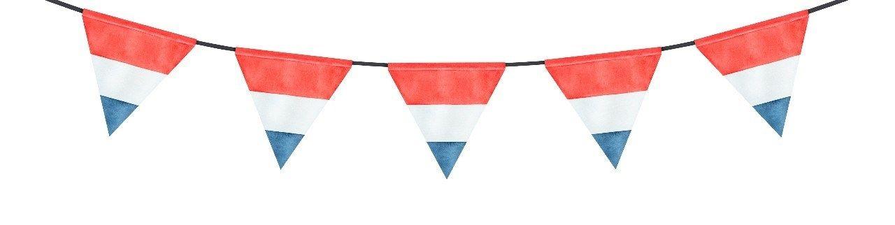 Koningsdag vlaggetjes roodwitblauw