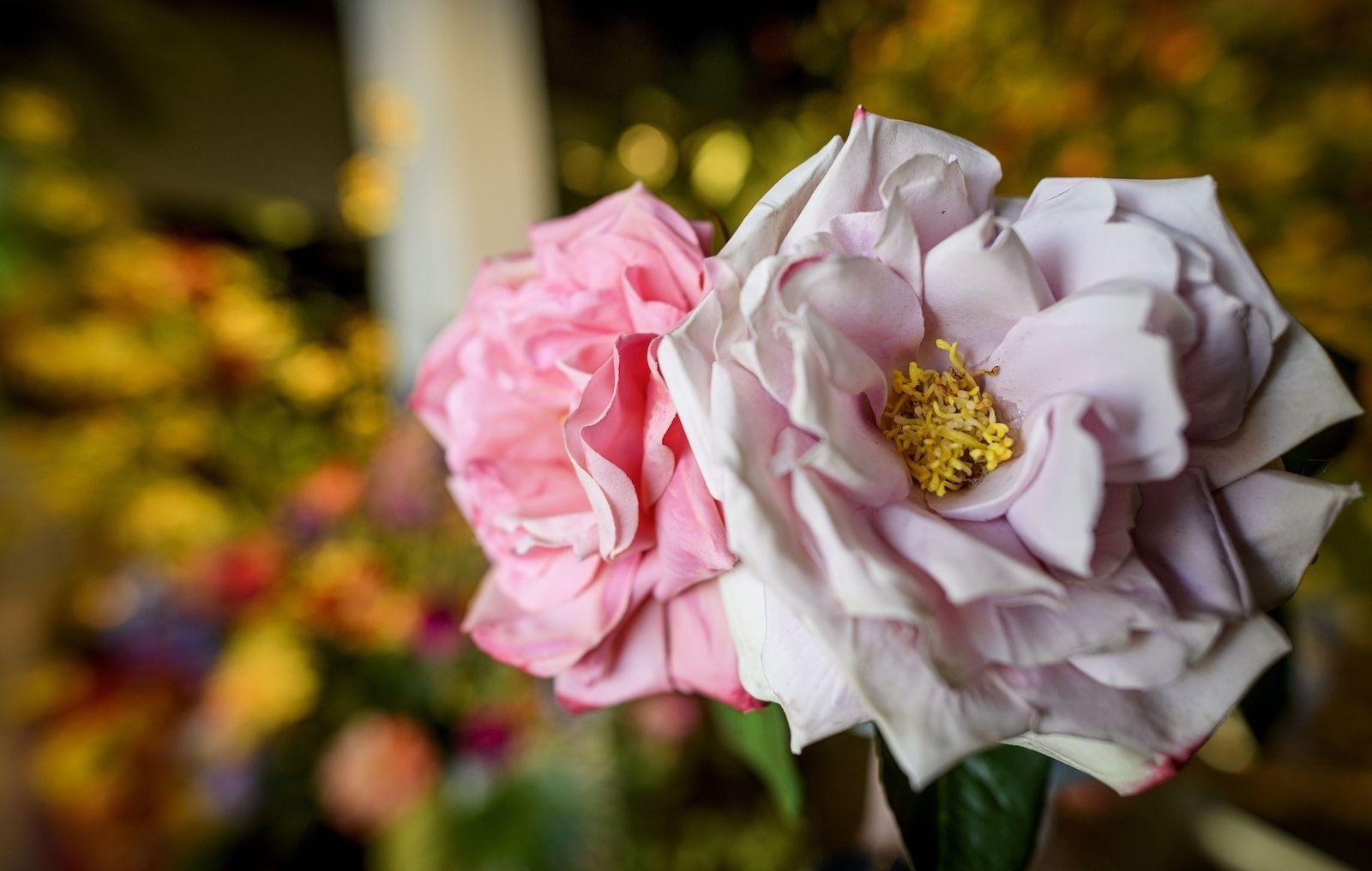 Silk ka kunstbloemen twente hengelo harrods louis vuitton Patrick Oude Groeniger