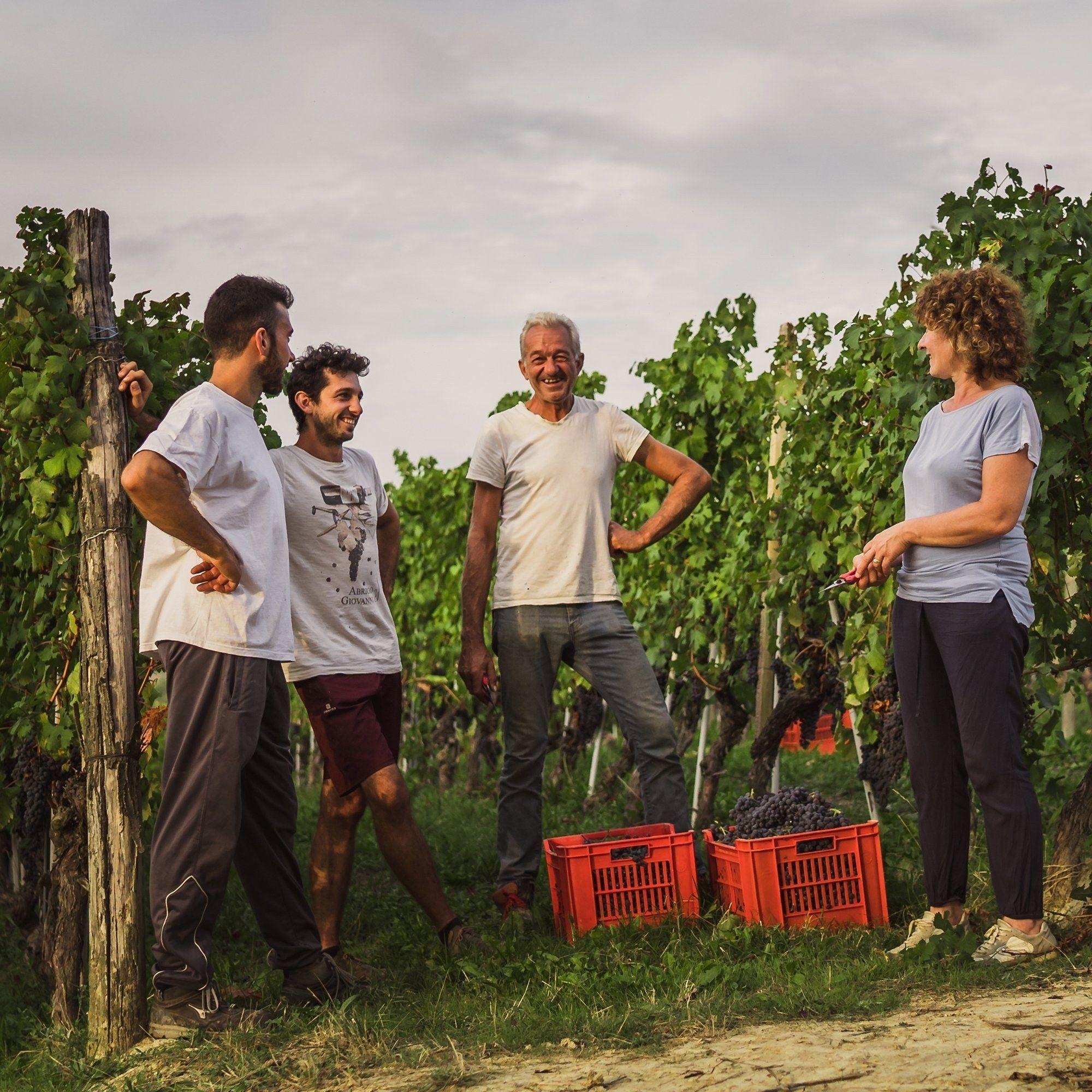 Abrigo wijngaard familie