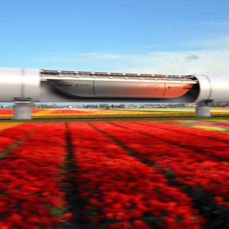 Cargoloop bloemenveld model