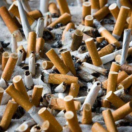 Tabak sigaretten tabaksindustrie roken
