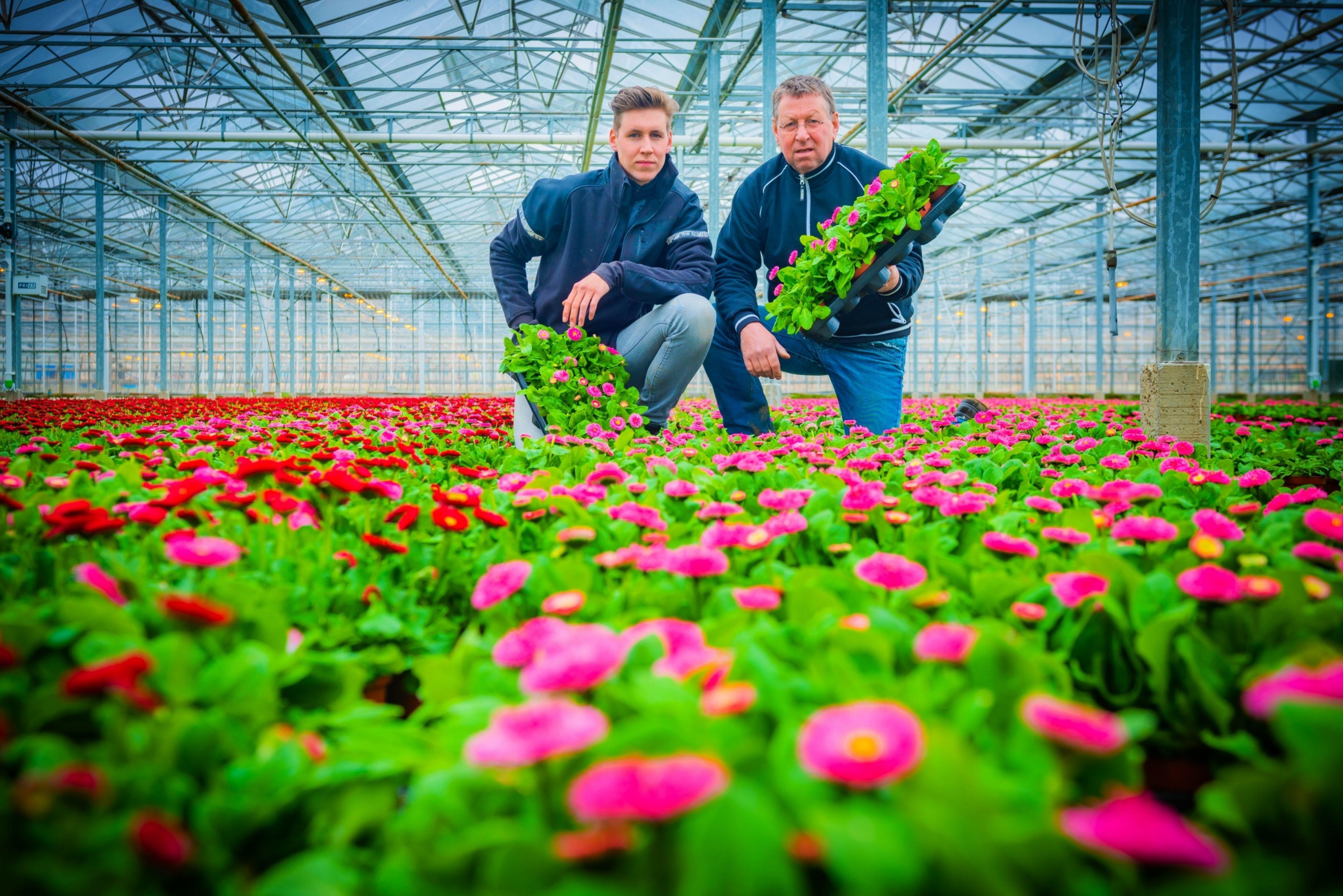 Telers André Knoppert en zoon coronacrisis tuinbouw lockdown maatregelen bloemen