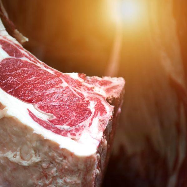 Stegeman vlees verkoop spaanse eigenaar Wijhe