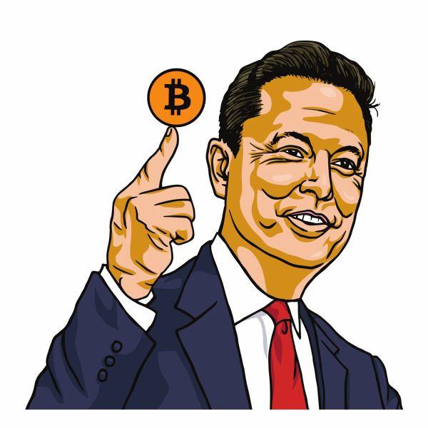 Elon musk crypto bitcoin
