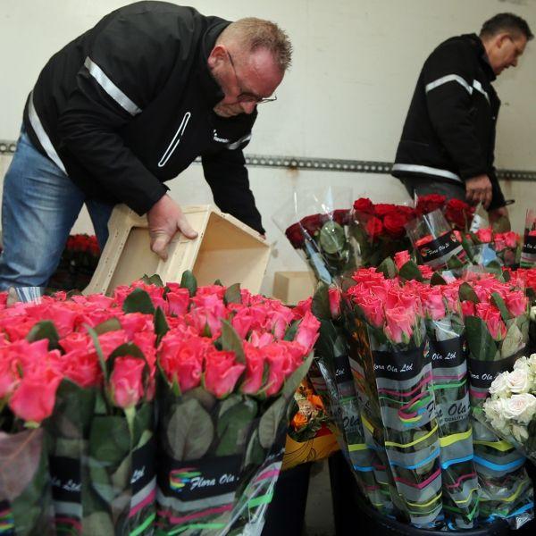 Sierteelt bloemen corona crisis