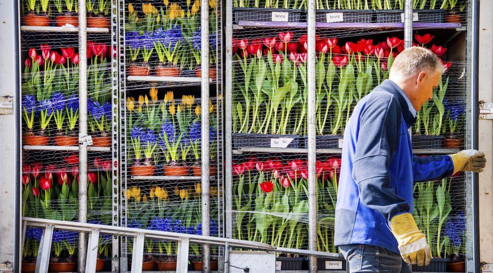 Brexit podcast Lennardvan Otterloo export bloemen