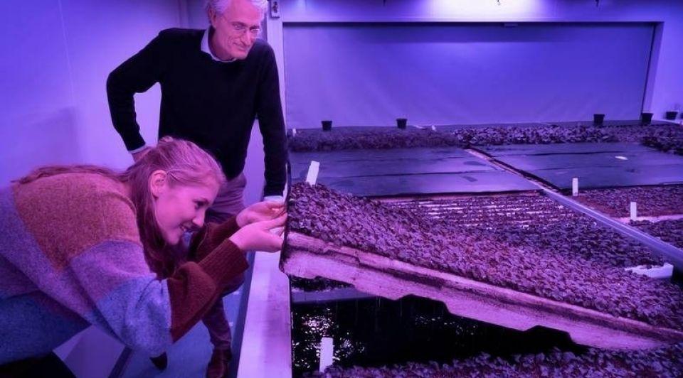 Directeur Michiel Peters en projectleider Lieve Hurkens controleren de wortelgroei in een van de klimaatkamers van Plant Lab copyright Marc Bolsius