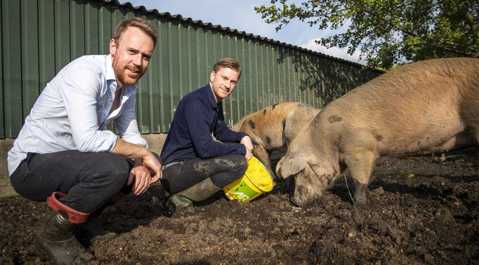 Meatable ondernemers varkens