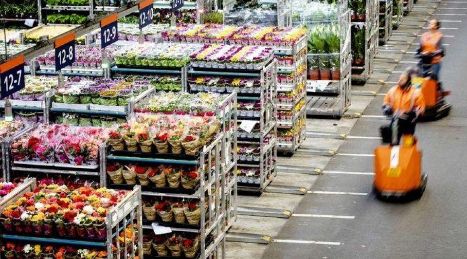 Bloemen export ondernemer