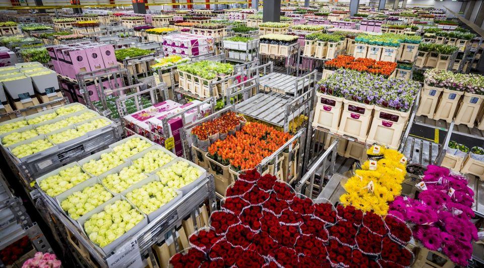 Bloemen veiling doordraaien coronacrisis tuinbouw