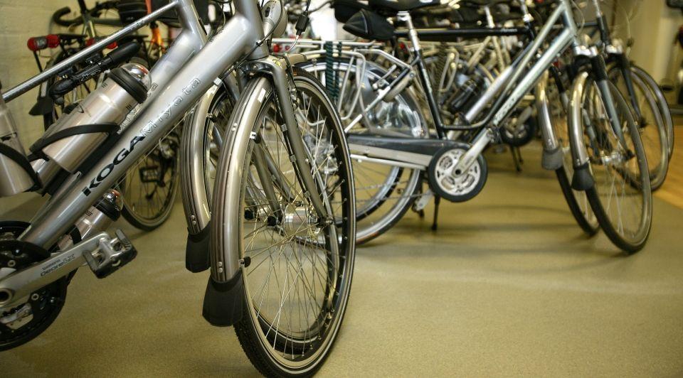 Groei fietsbranche fietsfabrikanten fietsenwinkels bolddata