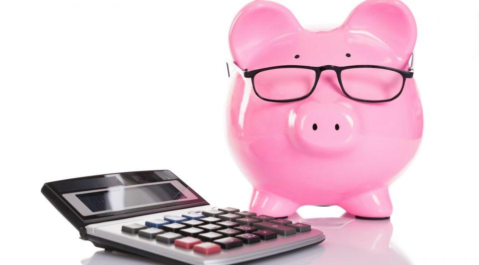 Spaarvarken financien geld advies rekenmachine