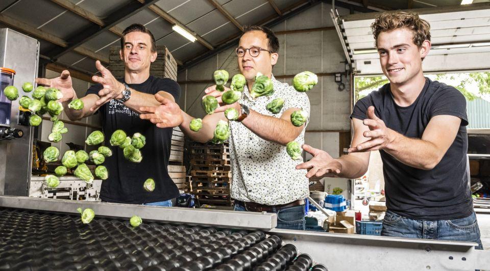 Spruitjes sorteermachine ondernemers