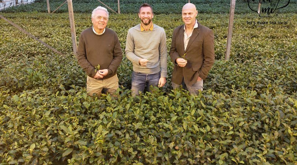 Tea duurzaam vegetarische slager thee