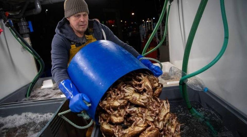 Visindustrie hard geraakt douane brexit