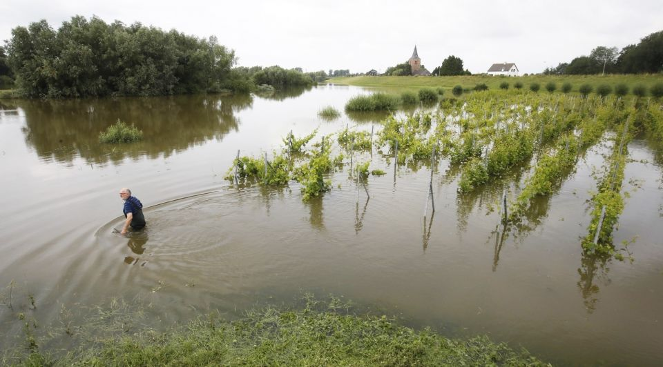 Wijngaard dodewaard water overstroming