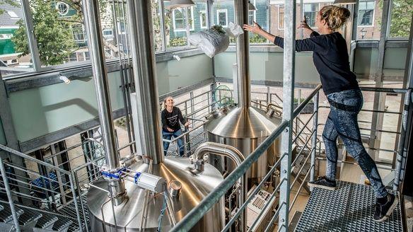 Bier bierbrouwerijen Nederland Oedipus gebrouwen door vrouwen gerstenat concurrentie speciaalbier pils onderscheiden belevenis ervaring1
