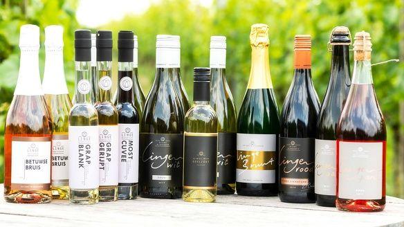 Pieter de boer druiven plukken wijn wijndomein de koen wijngaard nederland wijnboer wijnland diederik beker 1