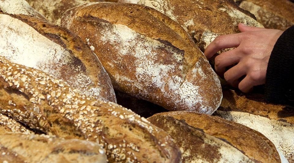 Biologisch brood