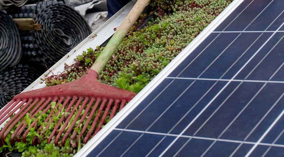 Dutch Greenhof vegatiedaken Frans Nikkels