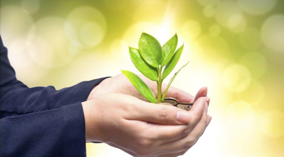 Duurzaamheid milieu milieubewust biologisch Thinkstock