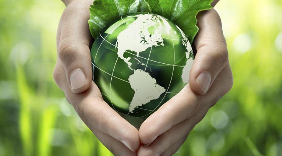 Groen duurzaamheid