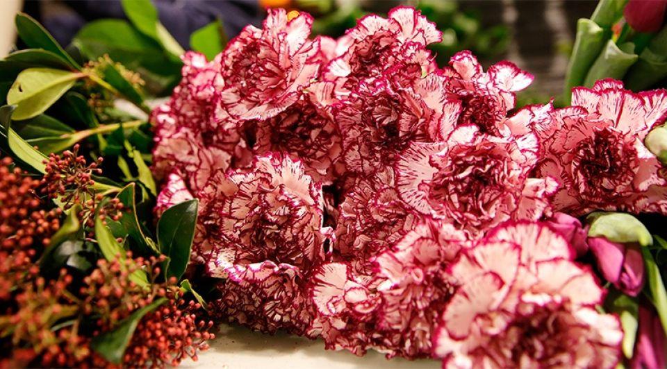Bloemen 24