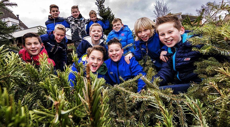 Kerstbomen 6