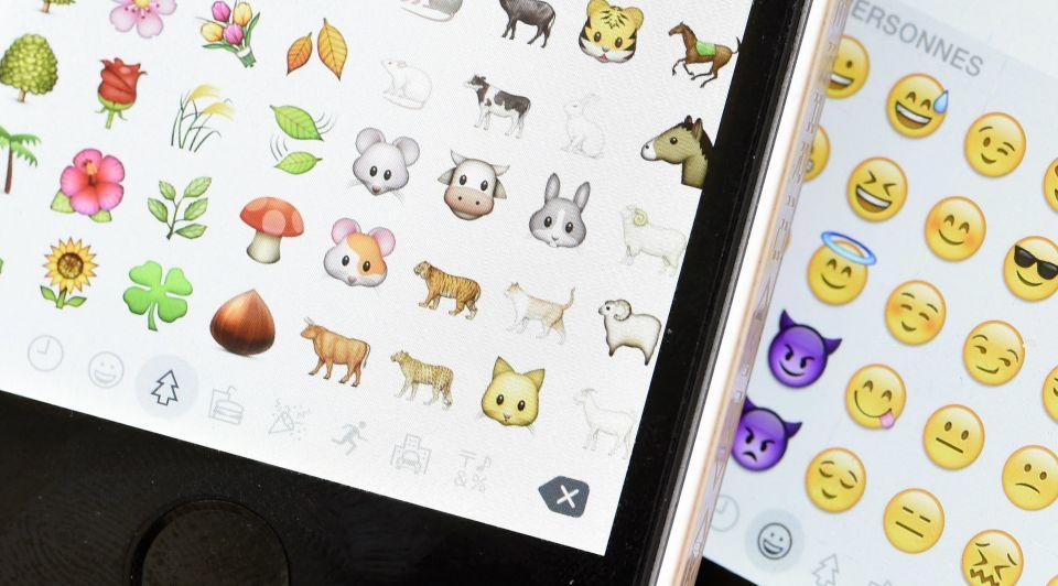 Lilian stolk emoji