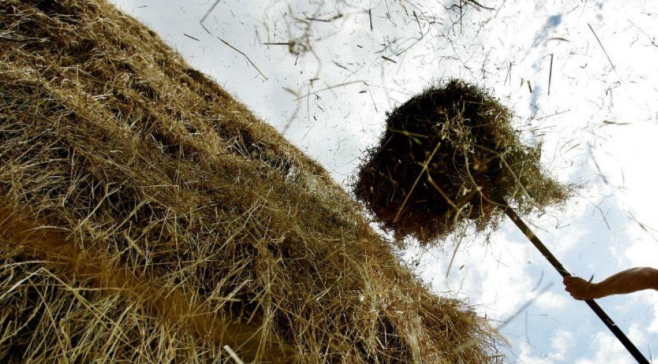 Marknesse hooiberg rust uitkijktoren