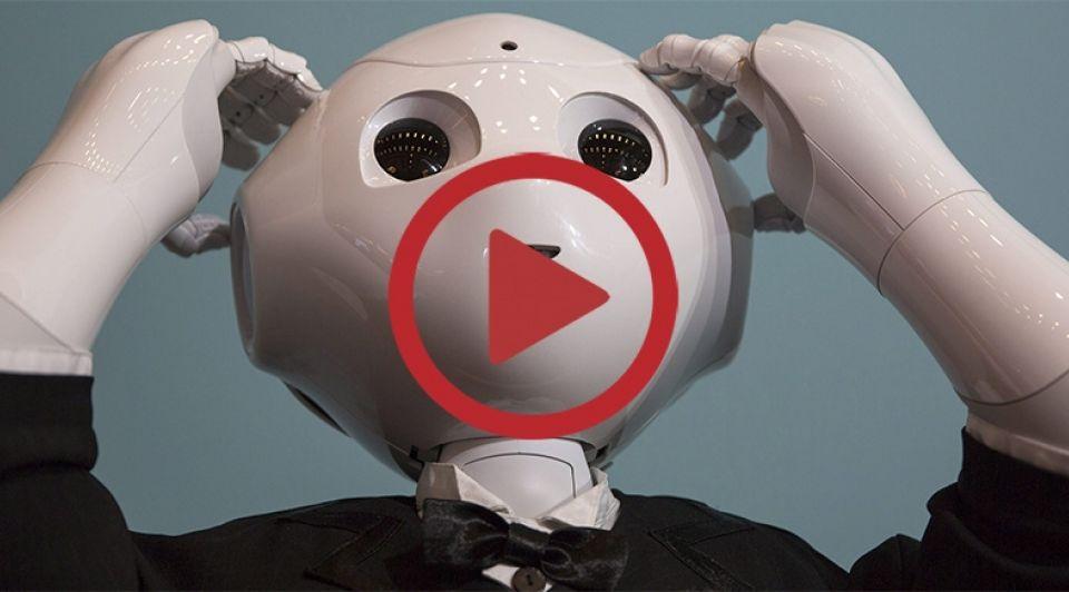Robot werk 1065