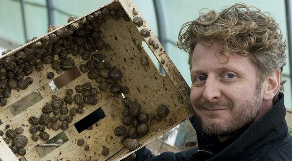 Slow escargots lennard ter hall nieuwaal slakken slakkenkwekerij biologisch