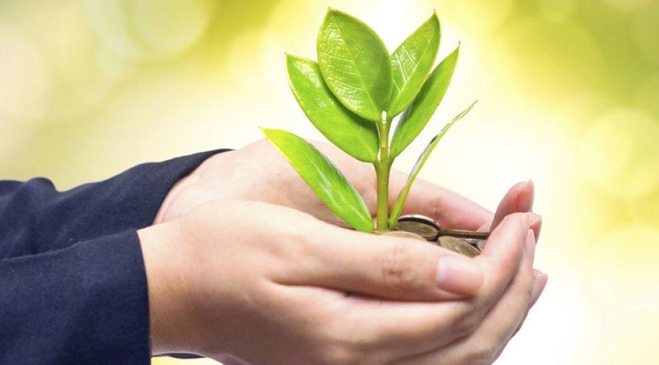 Startup duurzaam stock