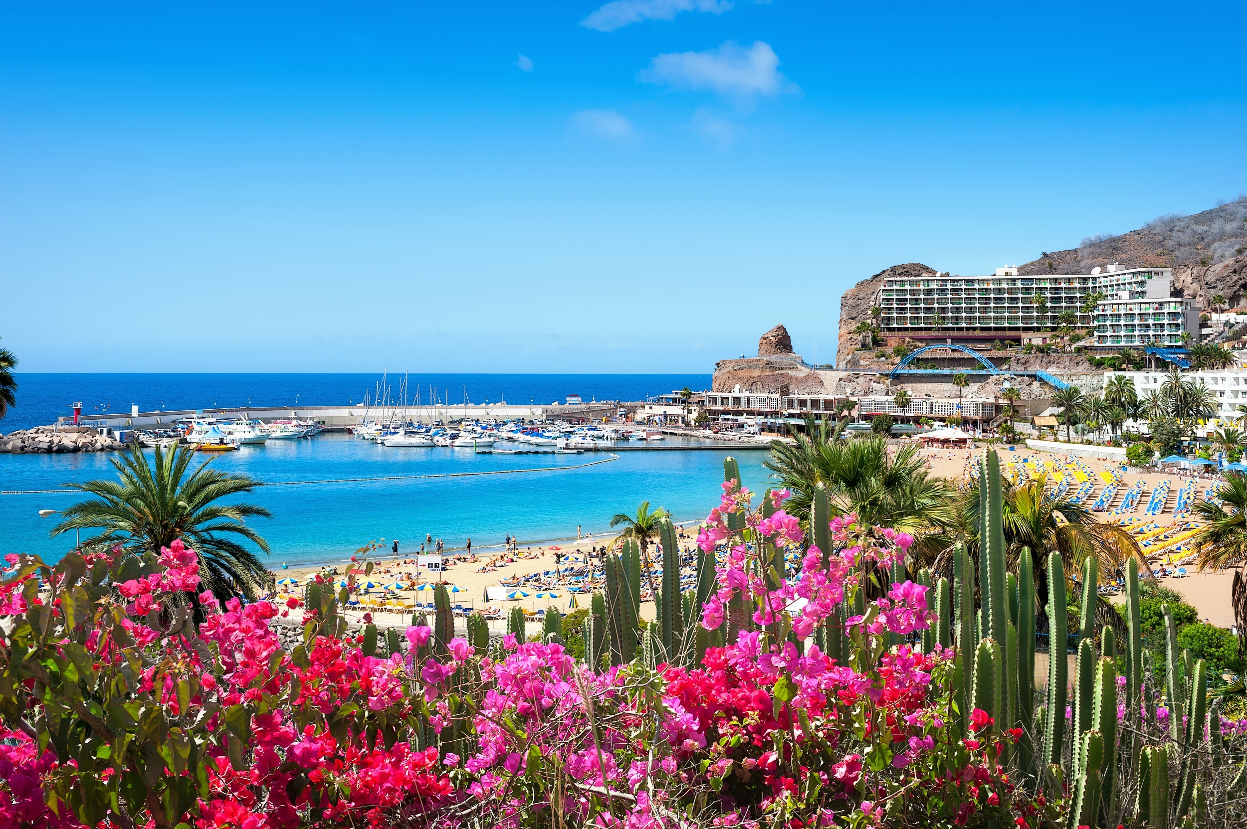 Al 45.000 aanmeldingen voor de proefreis naar Gran Canaria